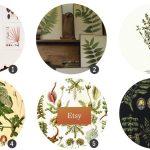 recursos-botanicos