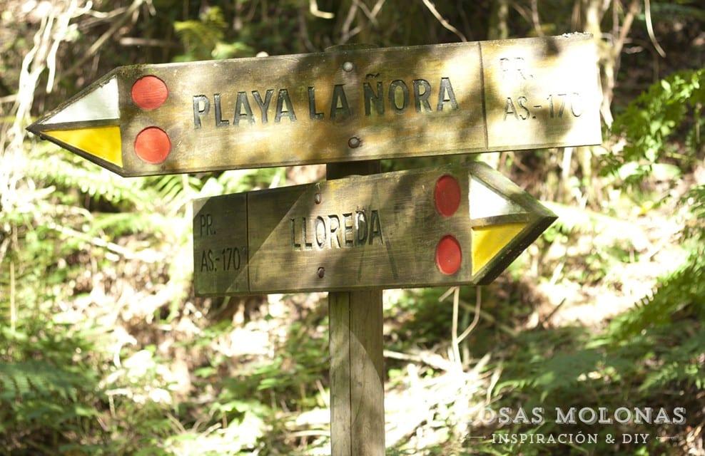 Planes con niños: paseando por la senda de La Ñora