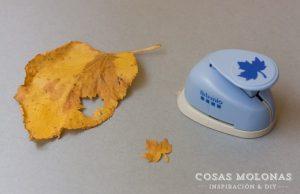 hojas-troqueladas
