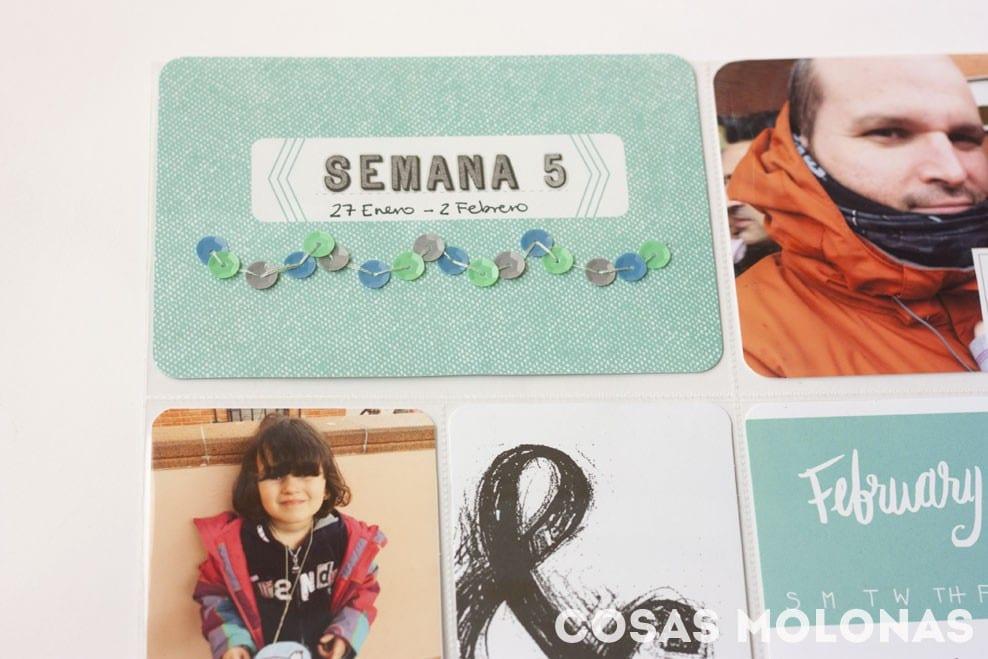 Project Life 2014: Semanas 5 a 8