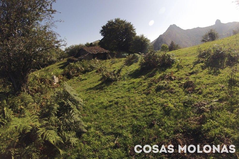 Ruta MTB en Asturias: Infiesto-La Pesanca-Infiesto