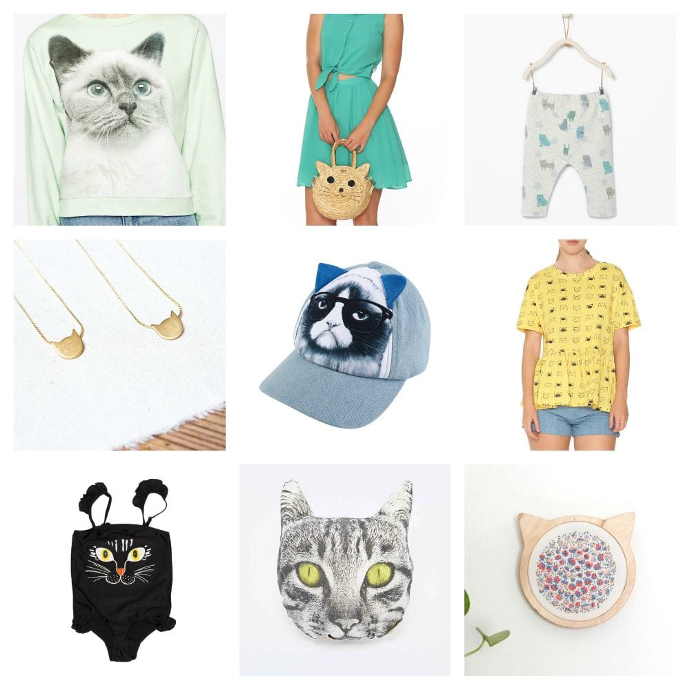 Tendencias: Gatos