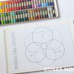 rueda-color