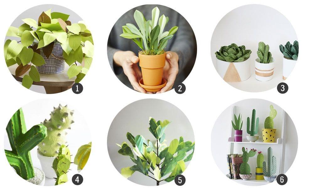 12 DIYs de plantas de papel