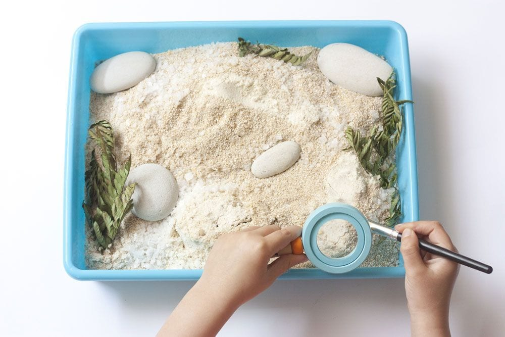 Manualidades para niños: Excavación de fósiles