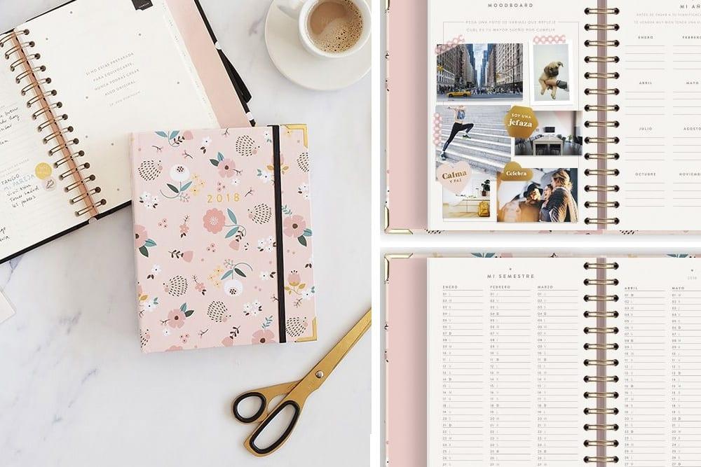charuca-planificador-agenda