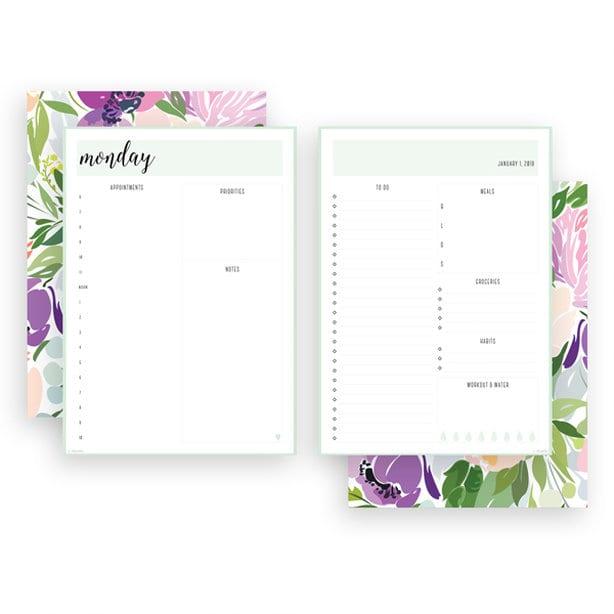 registro diario