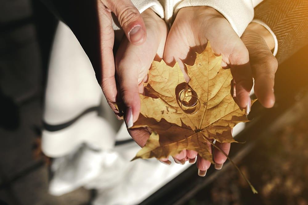 Inspiración / Recursos gratis para bodas de Otoño
