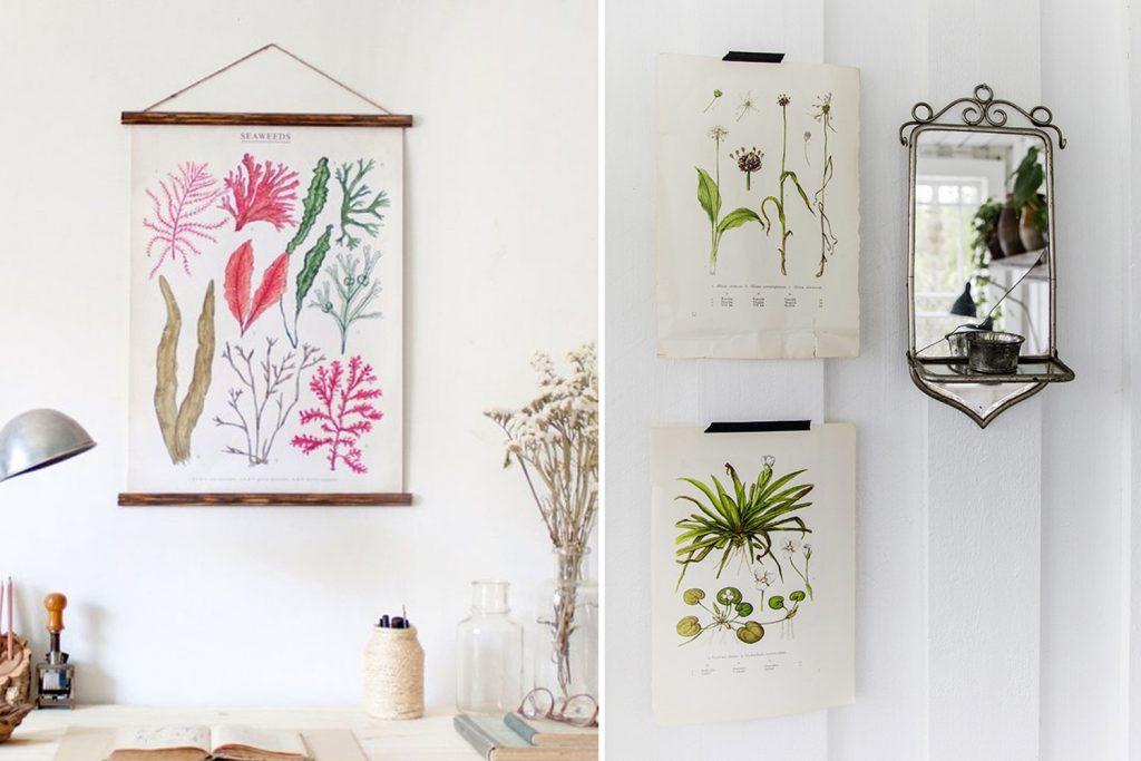 Cómo decorar con láminas botánicas vintage
